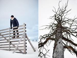 12-2015-joutsen-finland-photo-krista-keltanen-04