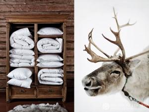 12-2015-joutsen-finland-photo-krista-keltanen-11
