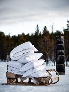 12-2015-joutsen-finland-photo-krista-keltanen-21